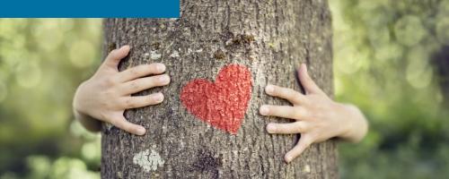 Programas e ações socioambientais